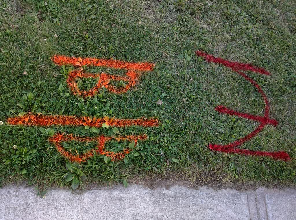 Рисунки на траве